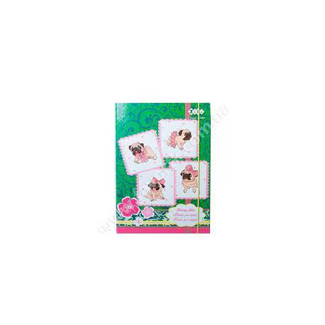 Папка для праці А4 картон на гумці ШК090 УФ