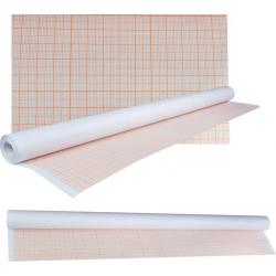 Папір координатний в рулоні 878*10м