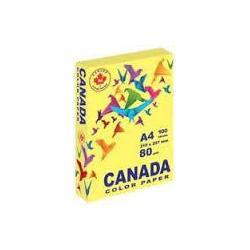 Папір кол. А4 80г 100арк. CANADA CN2011 пастель жовтий
