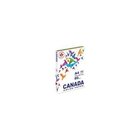 Папір кол. А4 80г 100арк. CANADA MIX 5кол.CN2044