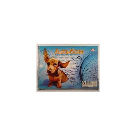 Альбом для малювання 30арк. (100г) пружина САВ-2